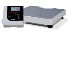 Portable Fitness Scale