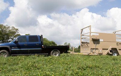 Livestock Weighing Solutions With Accurate Scale